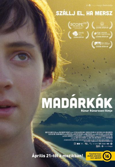 Madárkák – Plakát