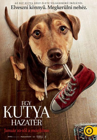 Egy kutya hazatér – Plakát