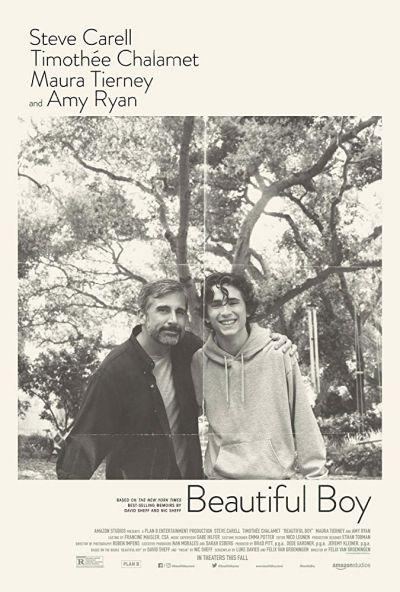 Beautiful Boy – Plakát