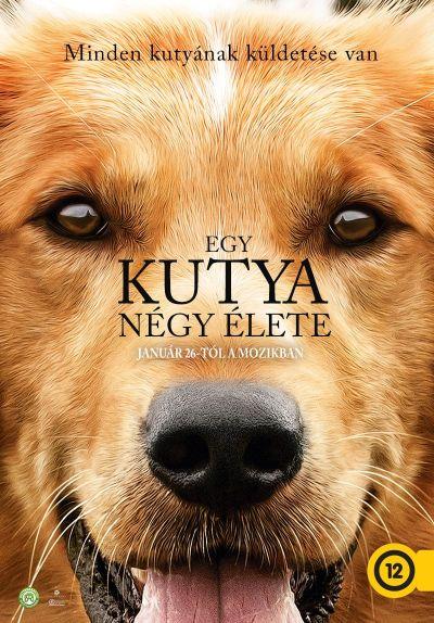Egy kutya négy élete – Plakát