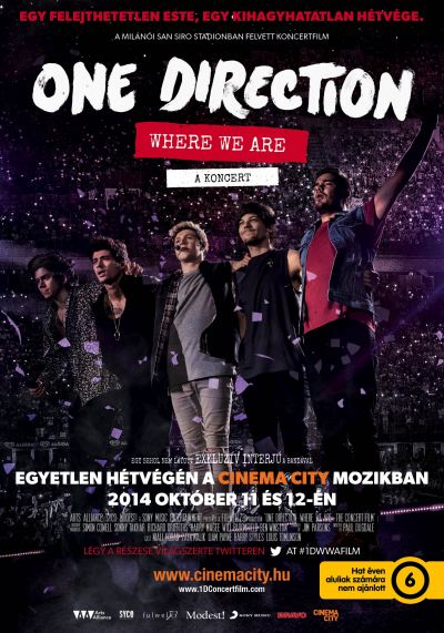 One Direction: Where We Are - A KONCERT – Plakát