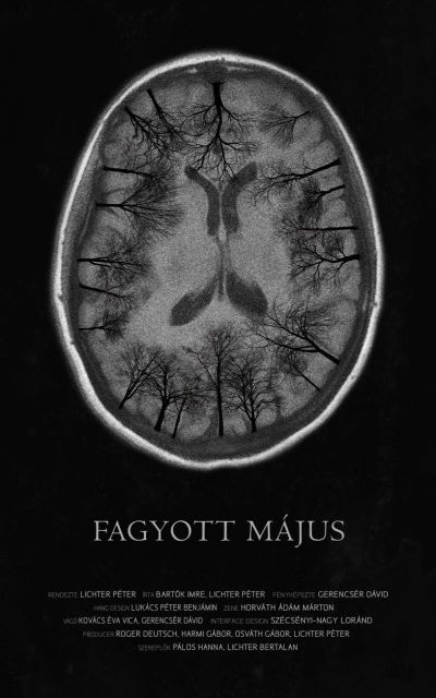 Fagyott május – Plakát