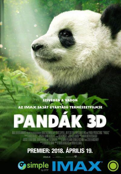 Pandák – Plakát