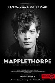 Mapplethorpe: a fényművész – Plakát